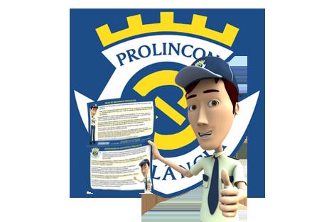 Guia gratuito da Prolincon sobre Dicas e informações de segurança